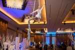 Aerialists dazzle audiences and add atmosphere